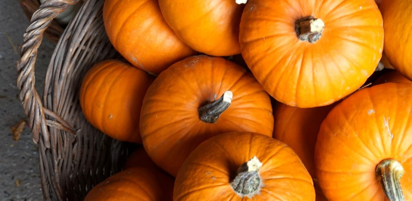 Relájate con nuestro tratamiento corporal 'This is Halloween'